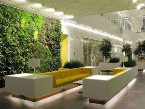 Công ty xây dựng tại Đà Lạt - Nhà phố không gian xanh
